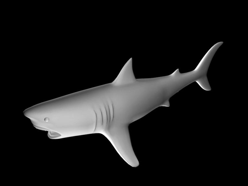 Scary Shark 3d rendering
