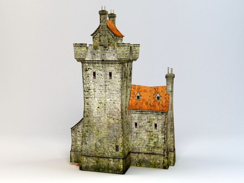 Medieval Castle Village 3d rendering