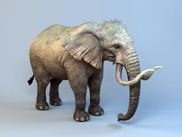 Ancient Mammoth Elephant 3d preview