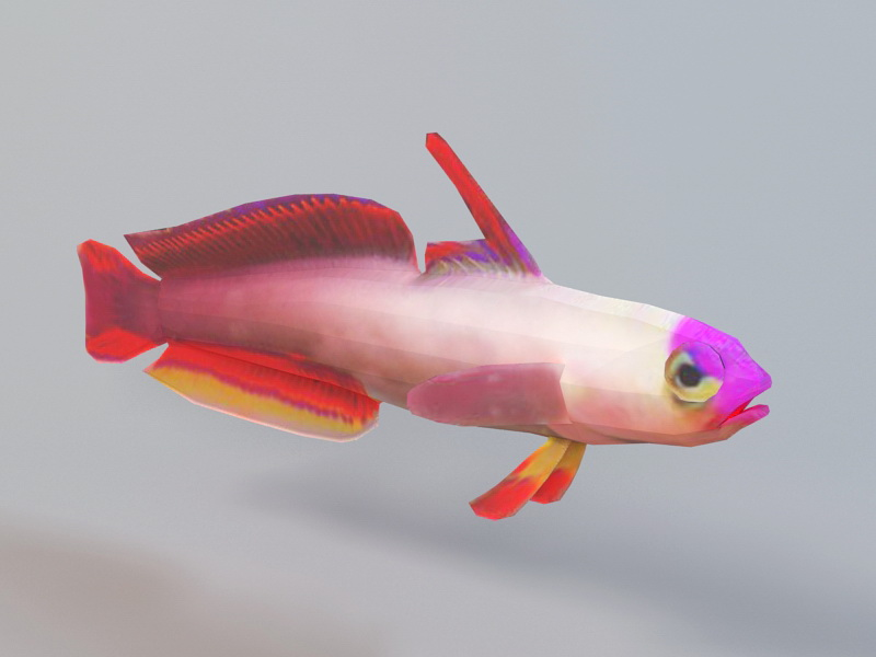 Animated Purple Fish Rig 3d rendering