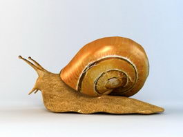 Giant Land Snail 3d preview