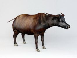 African Buffalo 3d preview