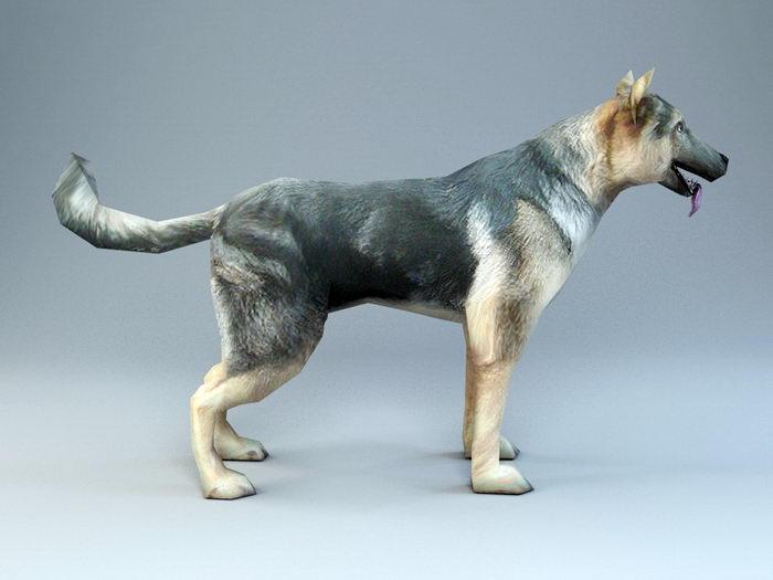 Police Dog 3d rendering