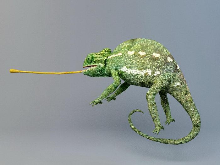Chameleon 3d rendering