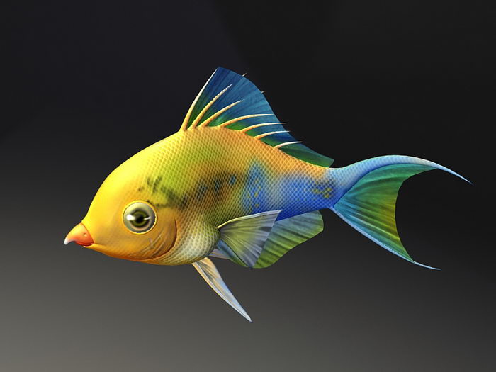 Rainbow Parrotfish Animated Rig 3d rendering