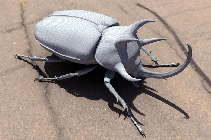 Three Horned Rhinoceros Beetle 3d rendering