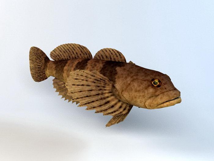 Cottus Kazika Fish 3d rendering
