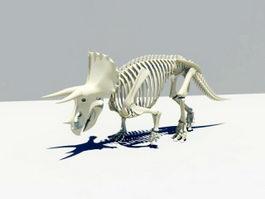 Triceratops Skeleton 3d preview