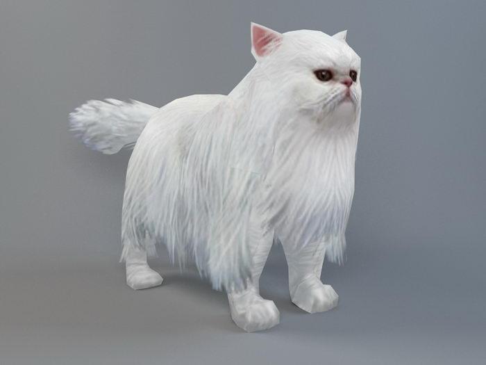 Persian Cat 3d rendering