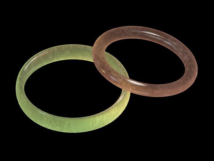 Jade Bangle Bracelet 3d rendering