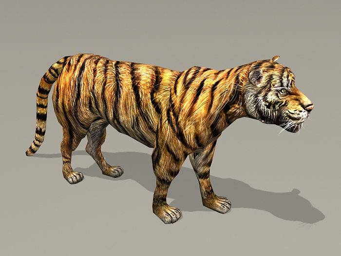 Tiger Rig 3d rendering