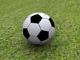 Soccer Ball on Grassland 3d preview
