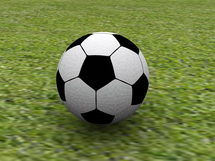 Soccer Ball on Grassland 3d rendering