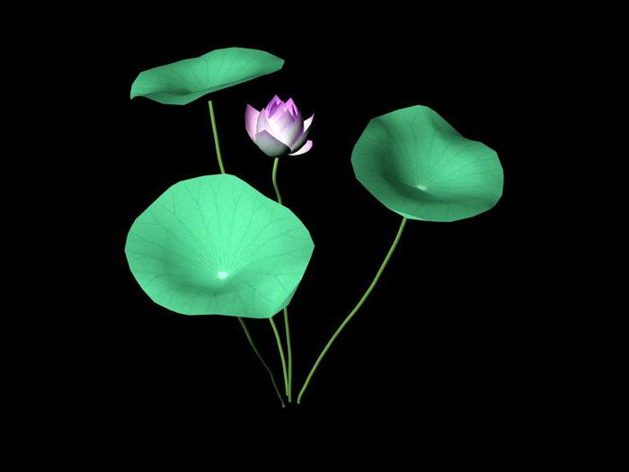 Lotus Flower 3d rendering