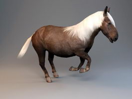 Animated Shetland Pony 3d preview