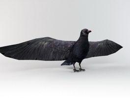 Raven Bird 3d preview