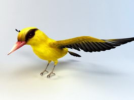 Oriolidae Bird 3d preview