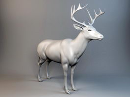 Red Deer Stag 3d model preview