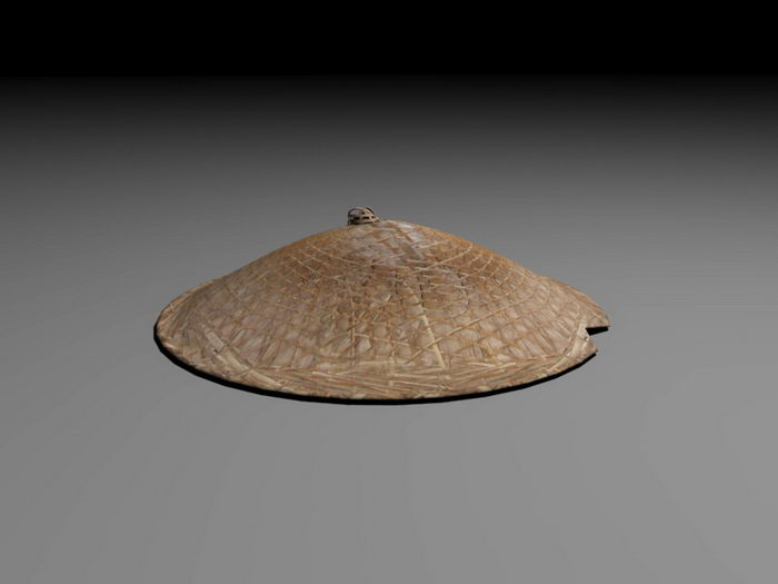 Asian Bamboo Hat 3d rendering