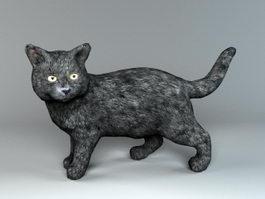 Black Cat 3d preview
