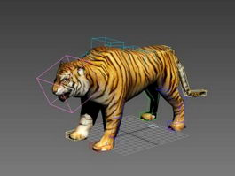 Low Poly Tiger Rigged 3d preview
