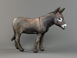 Low Poly Donkey 3d preview