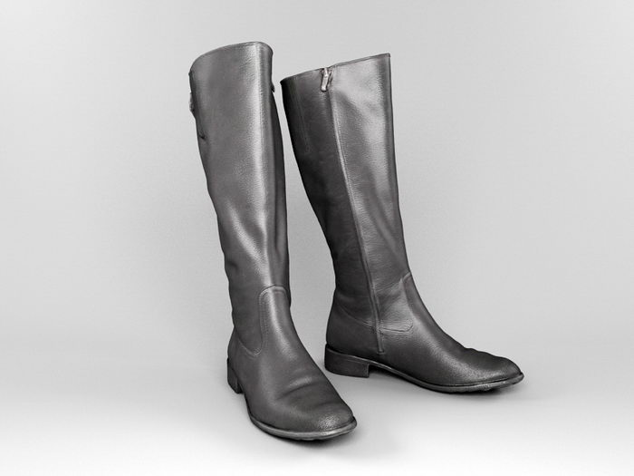 Ladies Tall Boots 3d rendering