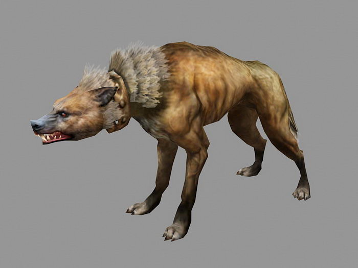 Jackal Wolf 3d rendering