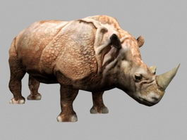 Animated Rhinoceros Rig 3d model preview