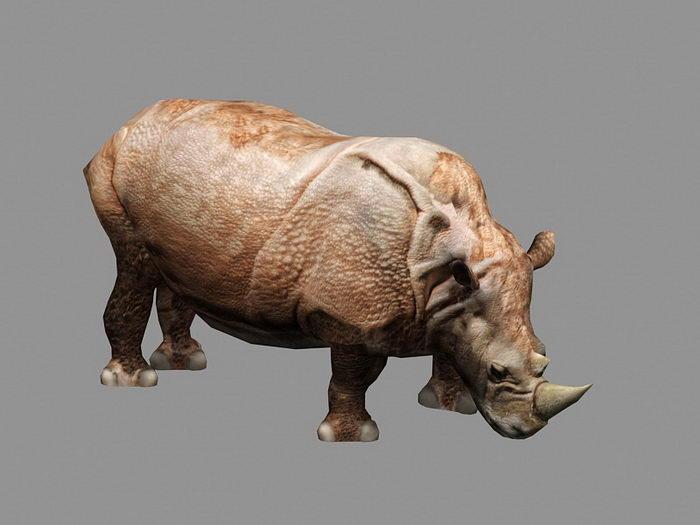 Animated Rhinoceros Rig 3d rendering