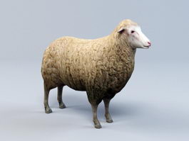 Sheep Animal 3d preview
