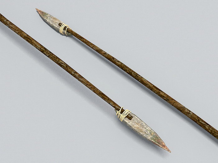 Stone Age Spear 3d rendering