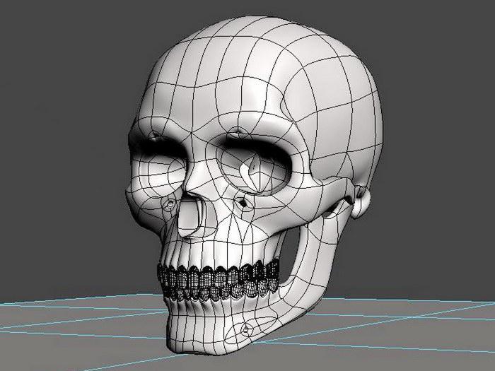 Skeleton Skull 3d rendering