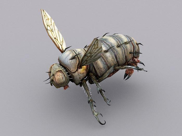 Blow Fly 3d rendering