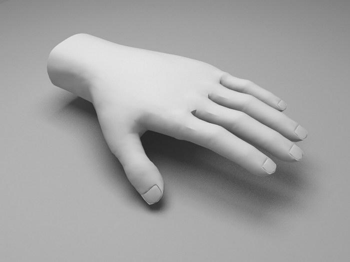 Hand Base Model 3d rendering