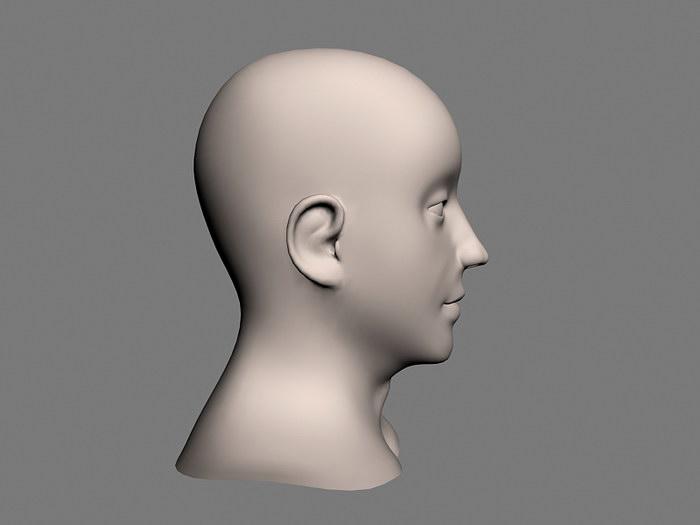 Female Head Base Mesh 3d rendering