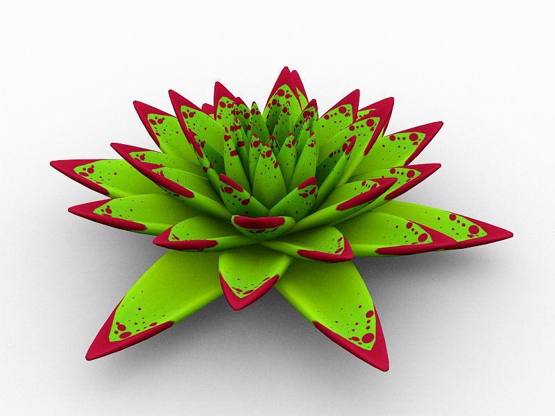 Echeveria agavoides Crassulaceae 3d rendering