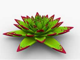 Echeveria agavoides Crassulaceae 3d preview