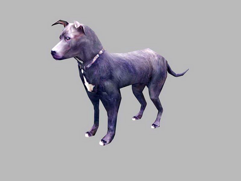 Dobermann Dog 3d rendering