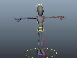 Man Character Rig 3d preview