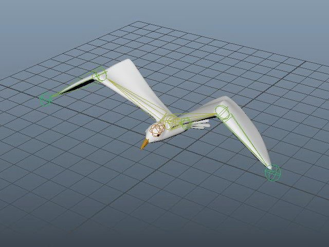 Seagull Bird Rig 3d rendering