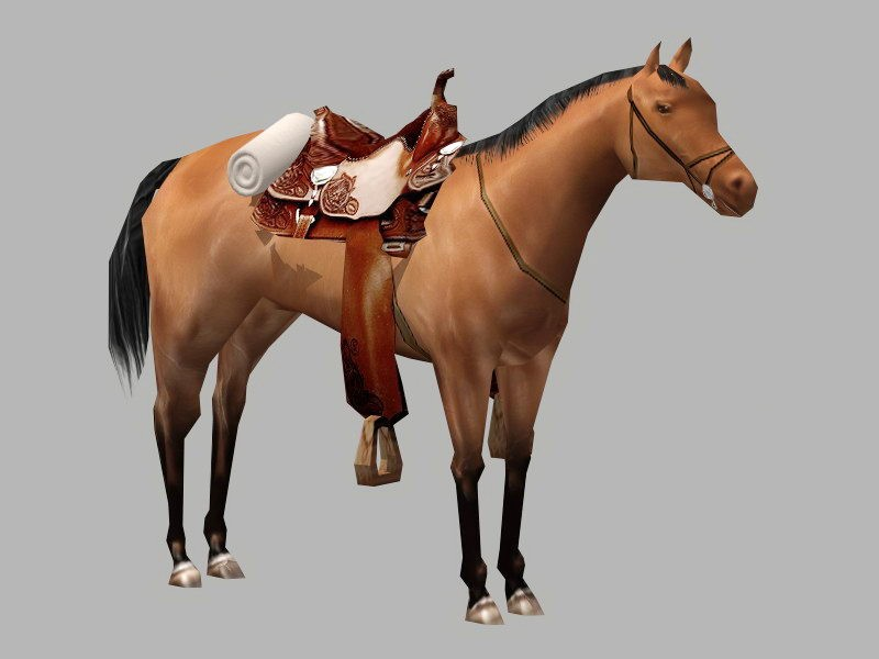 Arabian Horse with Saddle 3d rendering