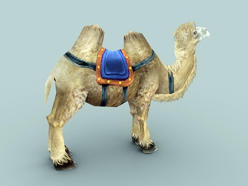 Camel with Saddle 3d rendering