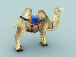 Camel with Saddle 3d preview