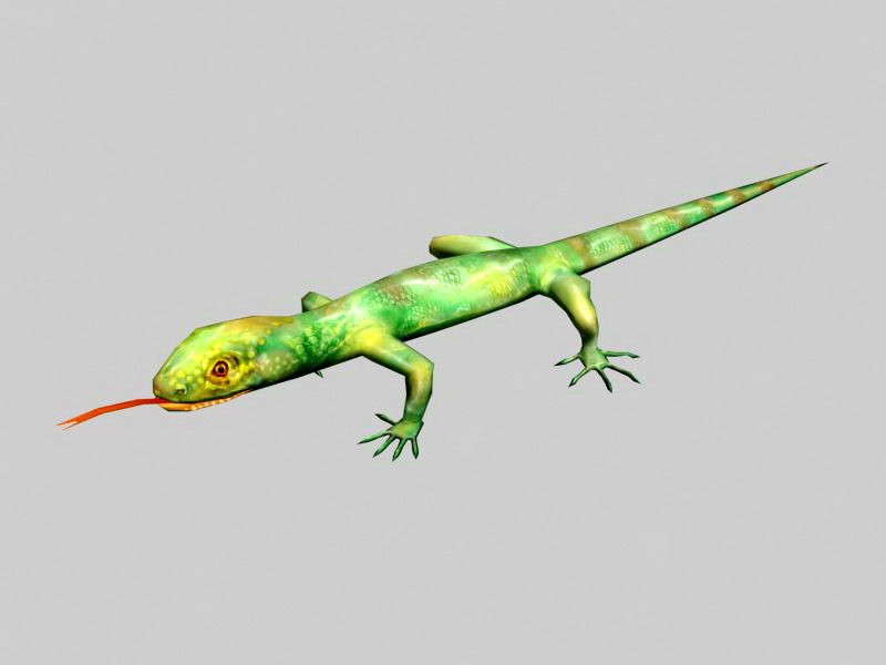 Two Color Lizard 3d rendering