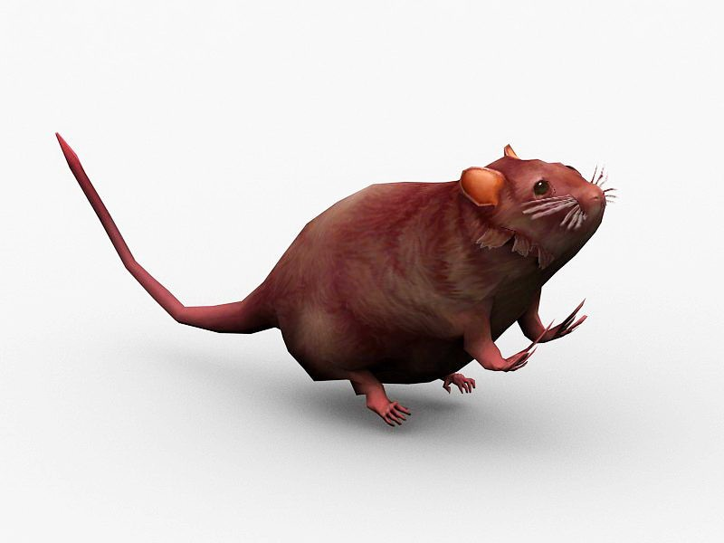 Animated Wild Mouse 3d rendering