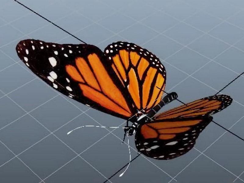 Orange Butterfly 3d rendering