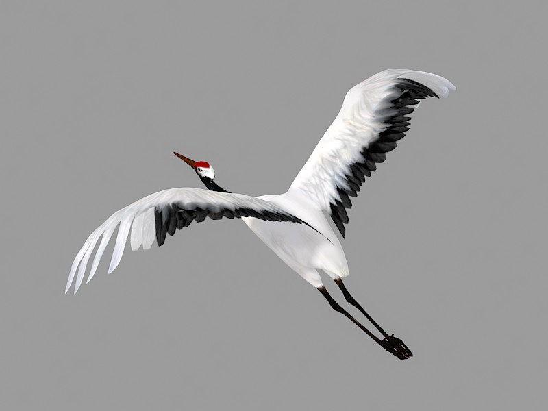 Animated Flying Crane 3d rendering