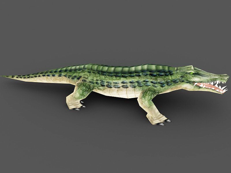 Green Alligator Monster 3d rendering