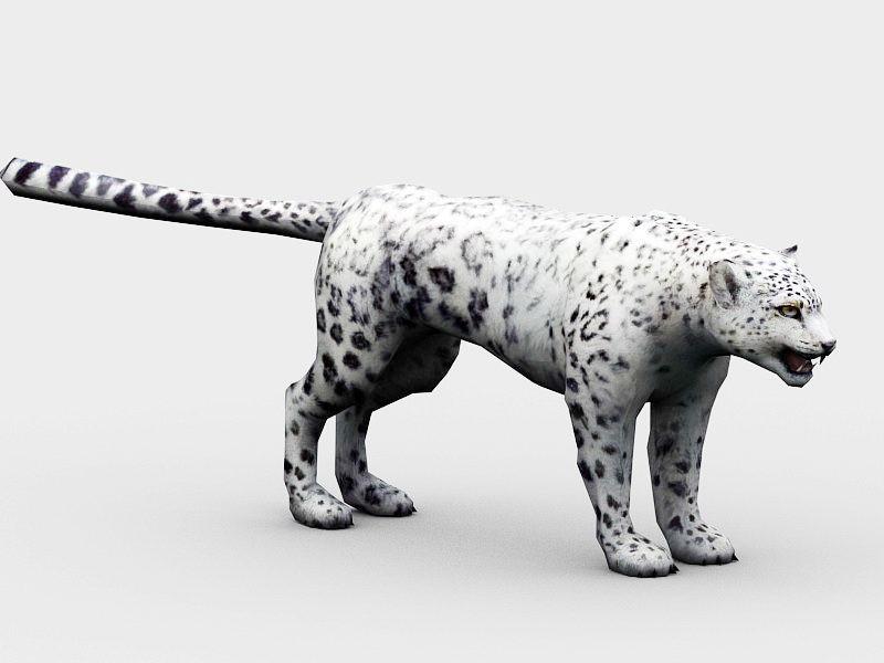 Snow Leopard 3d rendering